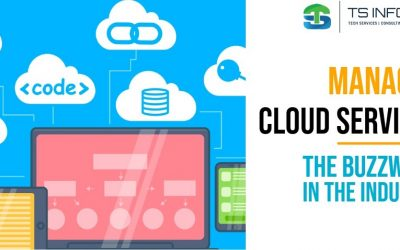 Managed Cloud Services : The Buzz Word in the Industry